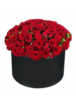 Красная кустовая роза в коробке