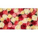 Розы: символика цветов