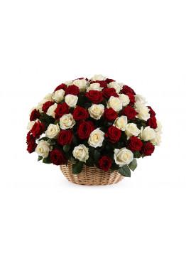 51 красно-белая роза в корзине