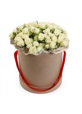 Белая кустовая роза в коробке