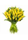 51 Тюльпан Желтый