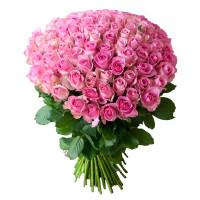 101 Бело-розовая роза Кэнди Аваланж (Candy Avalanche) 50см