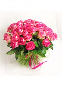 41 Бело-розовая роза Кэнди Аваланж (Candy Avalanche) 40см