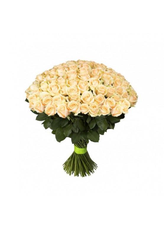 101 Кремовая роза Аваланж Пич (Avalanche Peach) 50см
