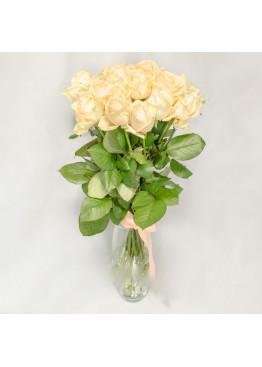 15 Кремовых роз Аваланж Пич (Avalanche Peach) 40см