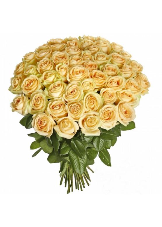 51 Кремовая роза Аваланж Пич (Avalanche Peach) 40см