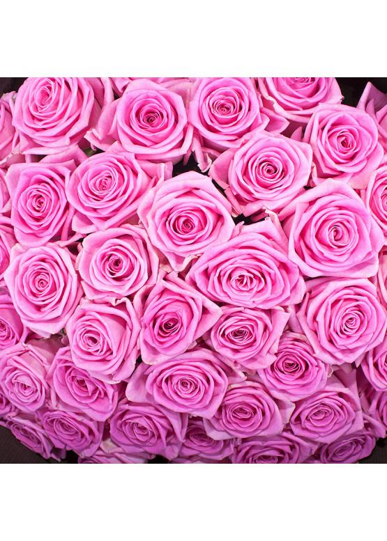 Роза Аква (Aqua) Розовая 70 см