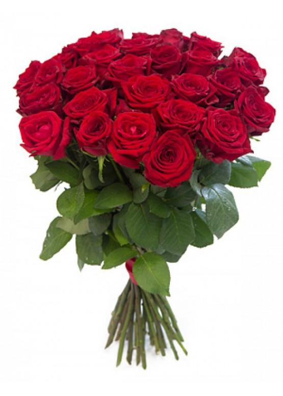 21 красная роза Ред Наоми (Red Naomi) 40см