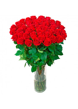 31 красная роза Ред Наоми (Red Naomi) 40см