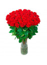 33 красных роз Ред Наоми (Red Naomi) 70см