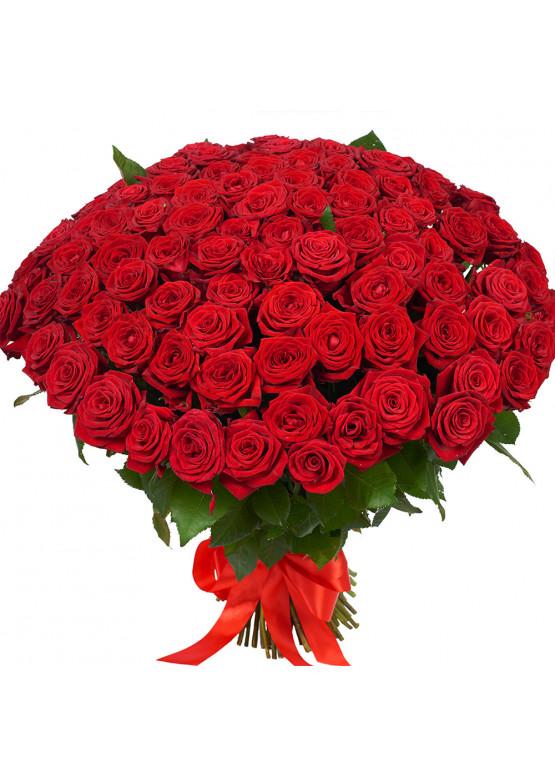 61 красная роза Ред Наоми (Red Naomi) 40см