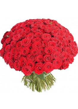 101 красная роза Ред Наоми (Red Naomi) 60см