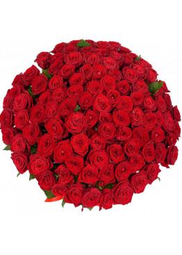 77 красных роз Ред Наоми (Red Naomi) 50см