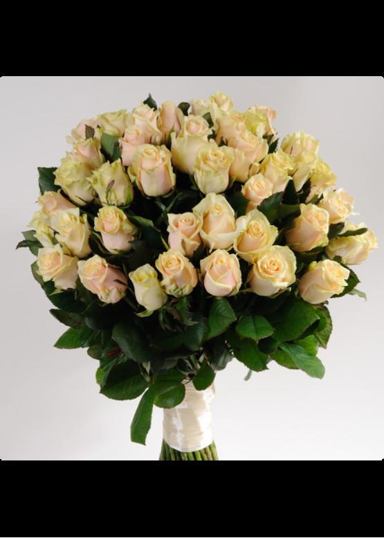25 Кремово-розовых роз Талея (Talea) 40см