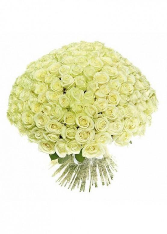 101 Белая роза Вайт Наоми (White Naomi) 50см