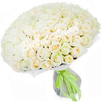 151 Белая роза Вайт Наоми (White Naomi) 70см