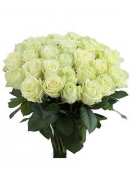 23 Белых роз Вайт Наоми (White Naomi) 40см