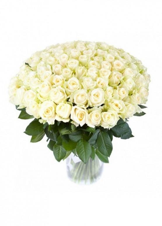 51 Белая роза Вайт Наоми (White Naomi) 70см