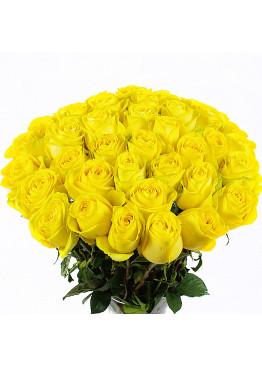 41 Жёлтая роза Пенни Лэйн (Penny Lane) 40см